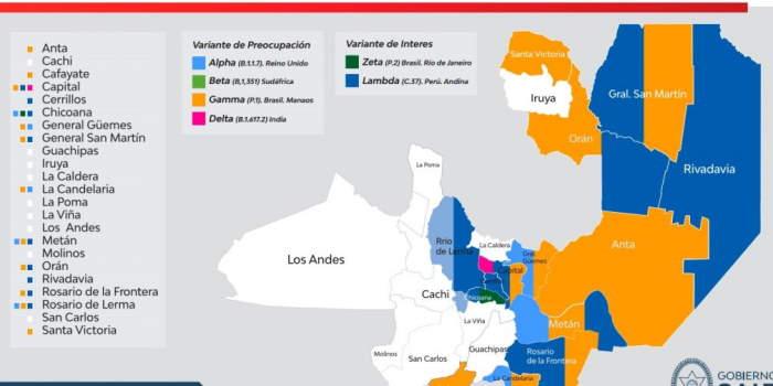 Se identificaron 5 variantes de coronavirus en la provincia